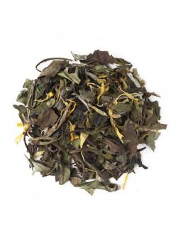 Tè Bianco Pai Mu Tan Primavera