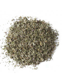Infusion Of Pennyroyal Mint