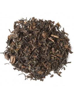 Tea Oolong Butterfly of Taiwan