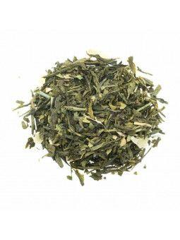 Il Tè Verde Ortosifón