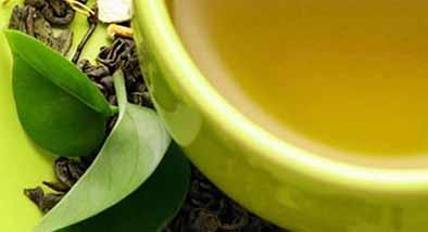 Que es el té verde