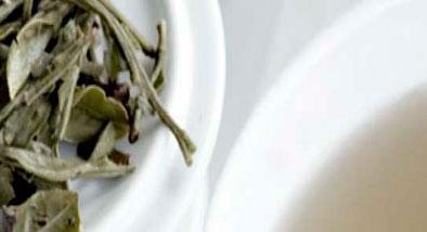 té blanco para adelgazar