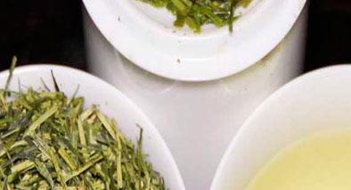 variedades té kukicha