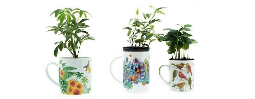Ideas para reutilizar las tazas y las teteras