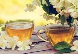 el te verde con menta adelgaza
